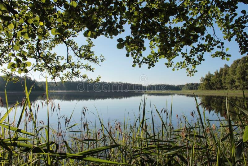 Finestra nel lago immagini stock