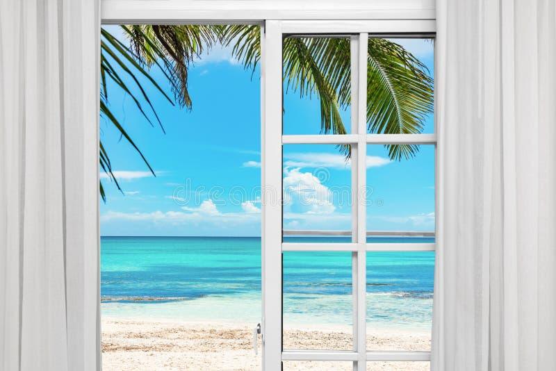 Finestra Palm Beach aperta fotografie stock
