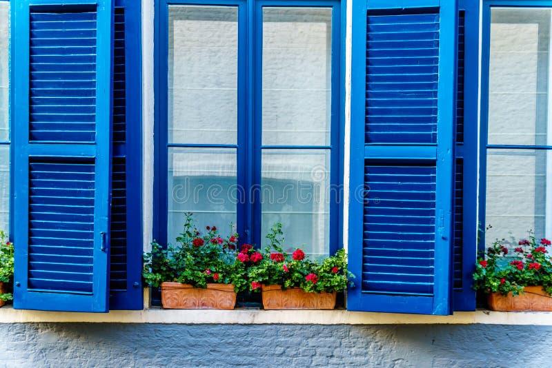 Finestre blu con gli otturatori ed i gerani rossi sul davanzale della finestra di una casa immagine stock libera da diritti