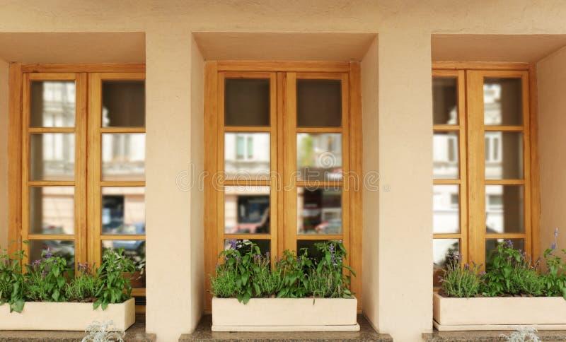 Finestre di legno moderne decorate fotografia stock libera da diritti