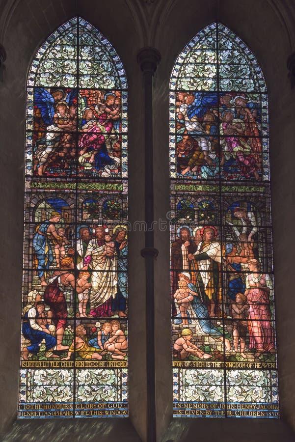 Finestre di vetro macchiato della cattedrale di Salisbury fotografia stock libera da diritti