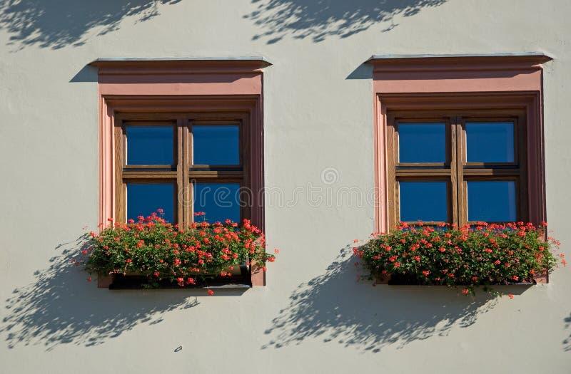 finestre floreali fotografie stock libere da diritti