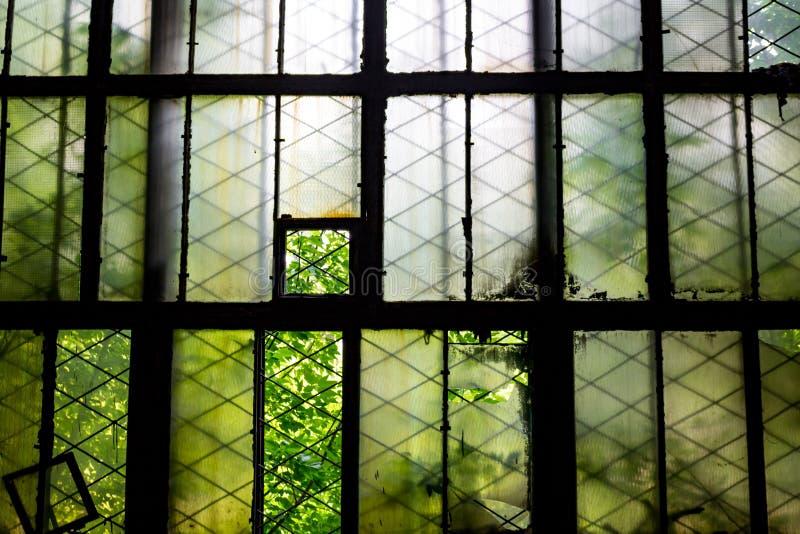 Finestre rotte nella vecchia fabbrica fotografia stock libera da diritti