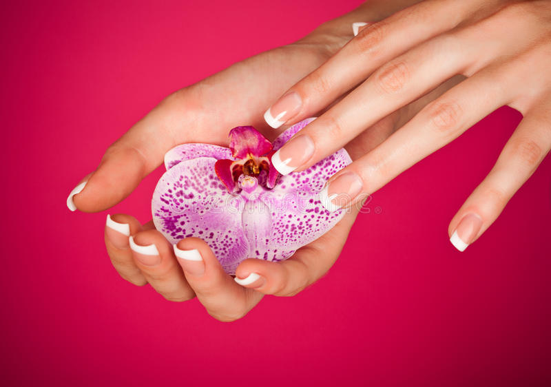 Finger with beautiful manicure touch a orchid stock photos