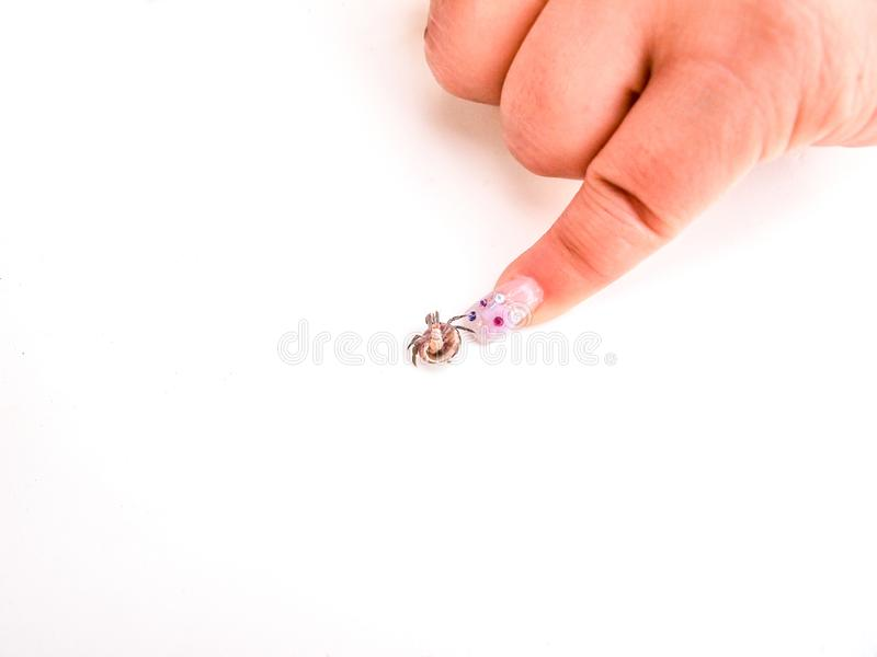 Finger pointing to a very small crab on a white background royalty free stock photography