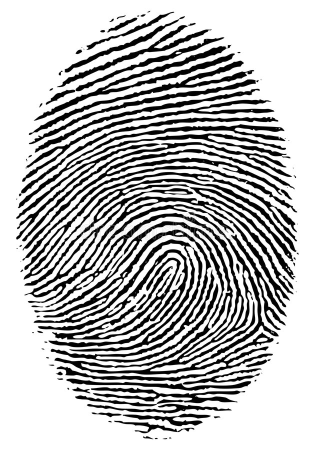 Download Finger print. stock vector. Image of tracing, finger, suspect - 7098194