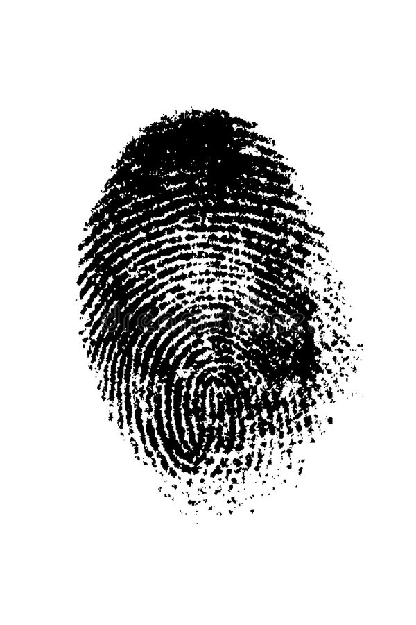 Finger Print. A finger print on a white background royalty free stock image