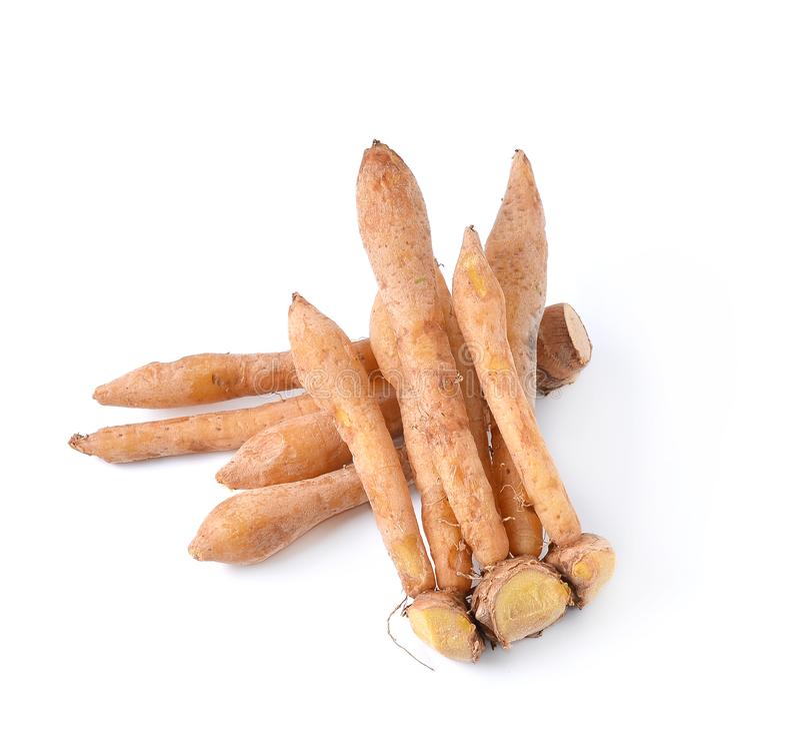 Finger root Ingredients for Thai Cuisine isolate on white stock image