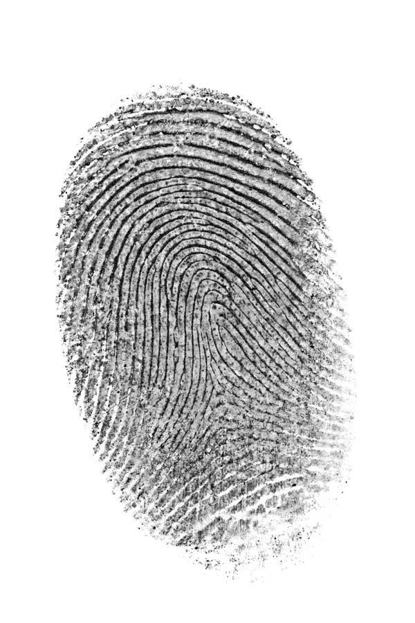 Fingerabdruck. lizenzfreies stockbild