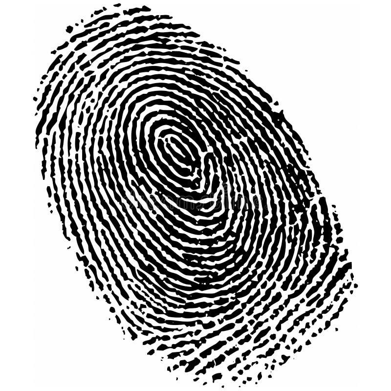 Fingerabdruck Vektor Abbildung Illustration Von M 246 Rder