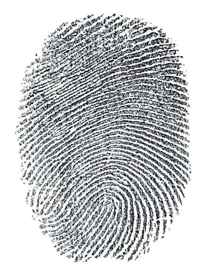 fingerabdruck stockbilder