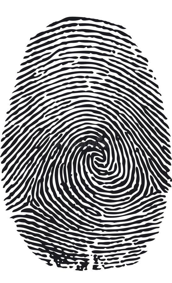 Fingerabdruck-Vektor vektor abbildung