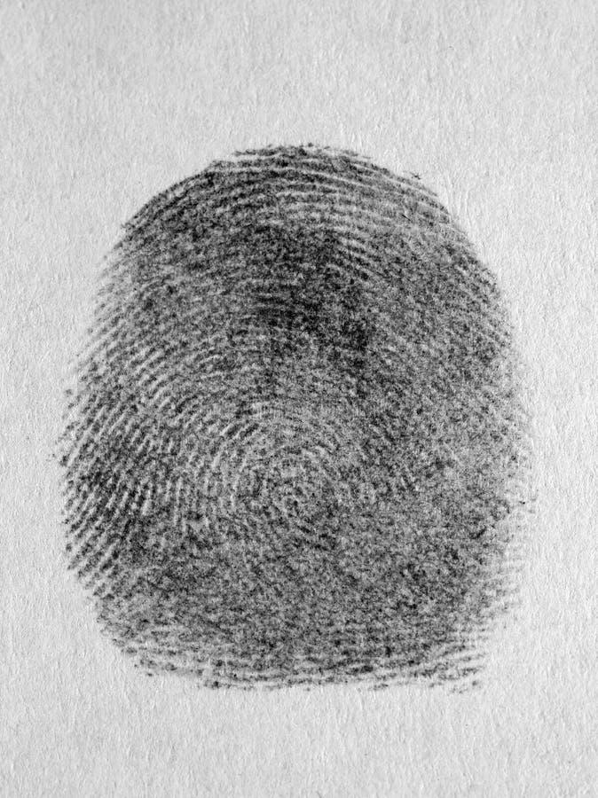 Fingeravtryck på en neutral bakgrund royaltyfri fotografi