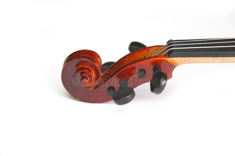 Fingerboard. Violin on white background stock photos