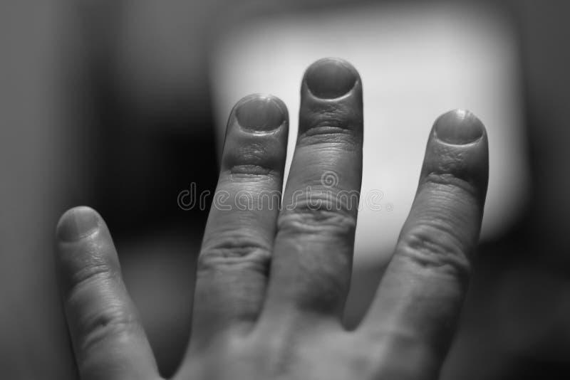 Fingeres de la mano izquierda Imagen abstracta fotos de archivo libres de regalías