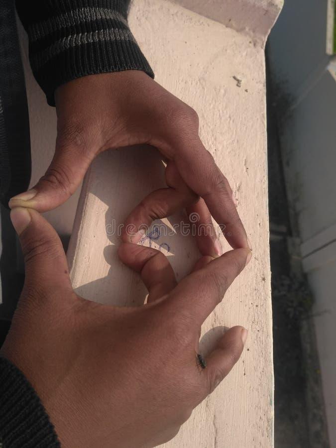 Fingerhrad royaltyfri bild