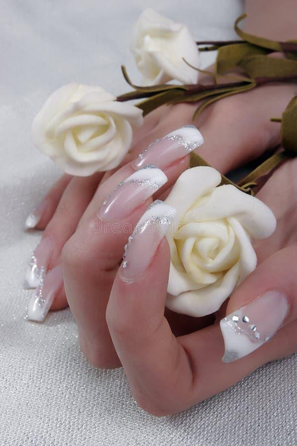 Fingernails. Woman holding white roses in hands, fingernails detail stock photos