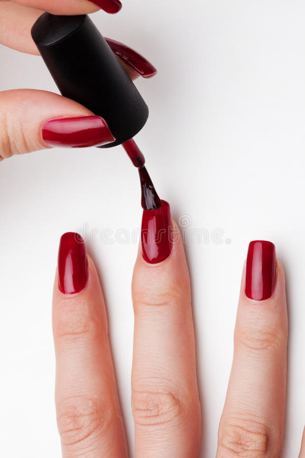 Fingernails care. Painting female fingernails with red enamel close-up on white background stock photos