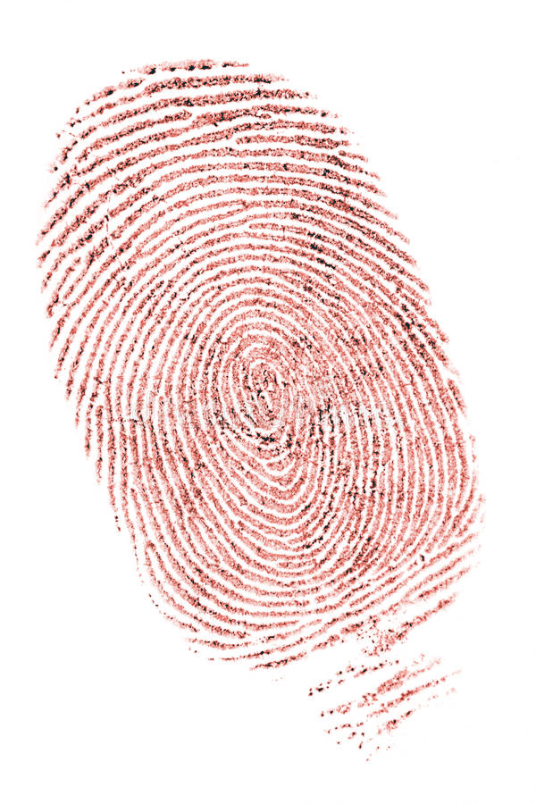 Fingerprint Stock Image