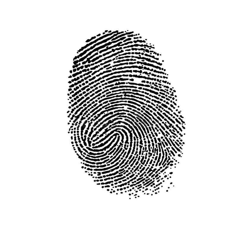 Fingerprint. royalty free illustration