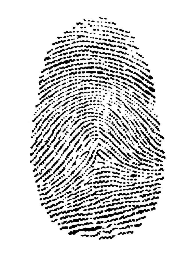 Fingerprint vector illustration
