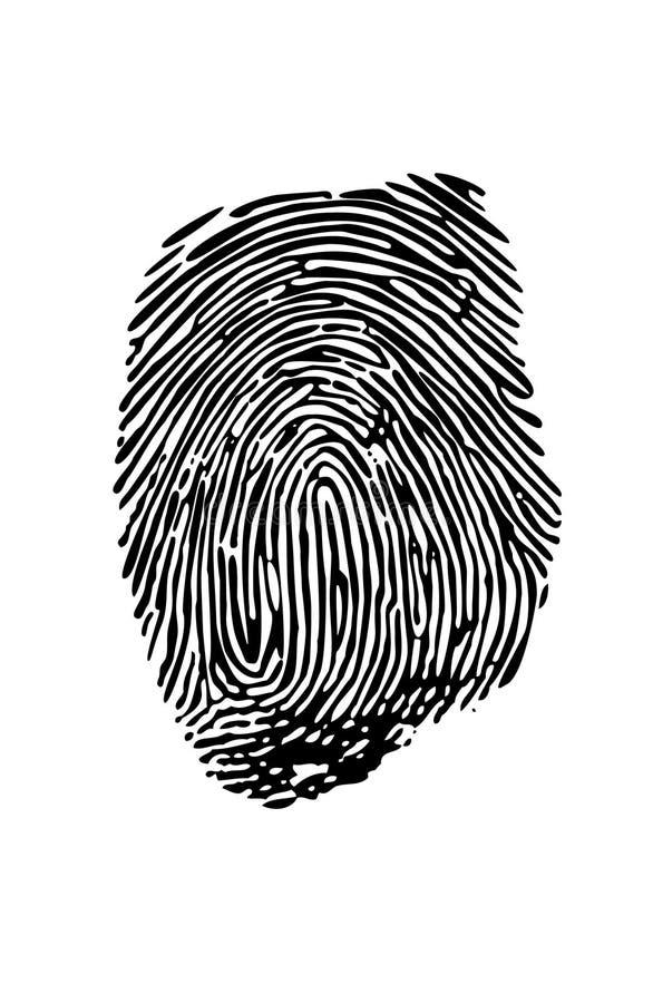 Download Fingerprint stock vector. Image of identity, theft, thief - 2195441