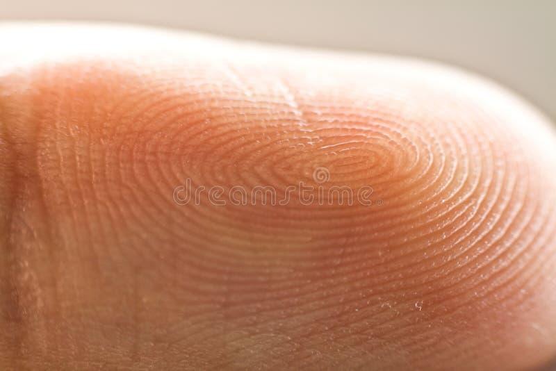 fingerprint imagen de archivo libre de regalías
