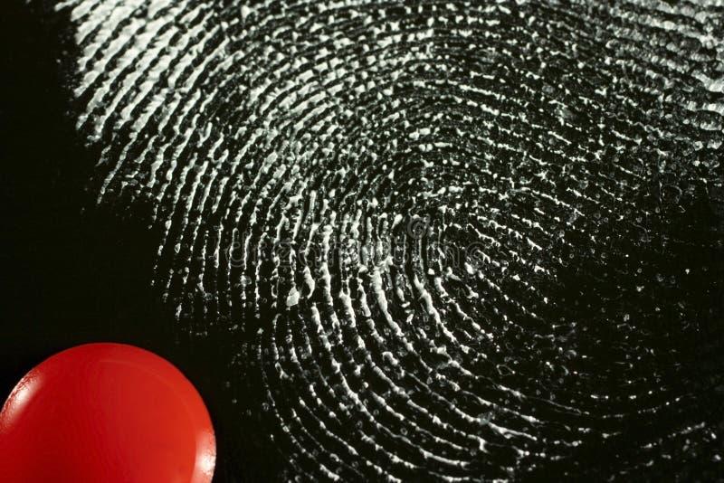 fingerprint obrazy stock