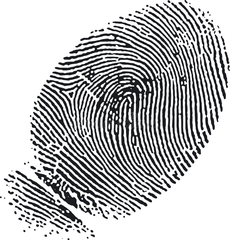 Download Fingerprint (7) stock vector. Image of print, digital, identification - 334491
