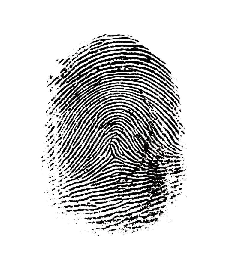 Download Fingerprint stock illustration. Image of concentric, biometrics - 7259662
