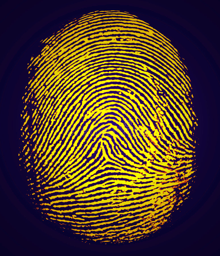 Download Fingerprint stock illustration. Image of biometrics, crime - 7865494