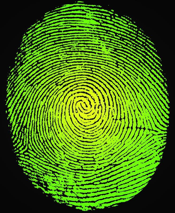 Fingerprint royalty free stock images