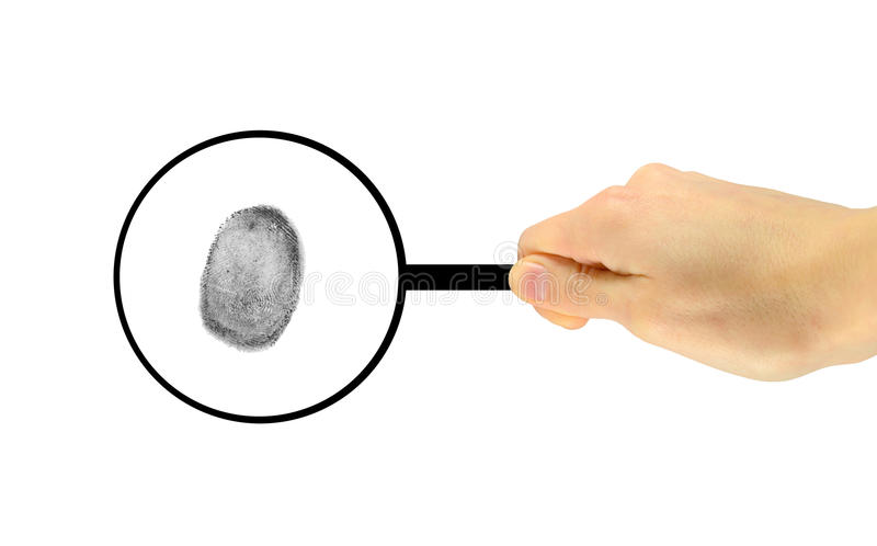 The fingerprint is considered under a magnifying glass royalty free stock photo