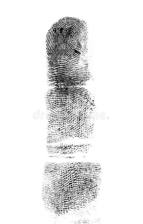 Fingerprint of the index finger on white background. Fingerprint of the index finger on a white background stock image