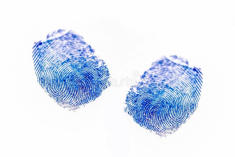 Fingerprints on a paper. The image of fingerprints on a paper stock image
