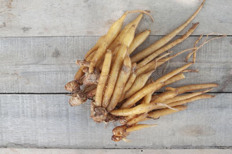 Fingerroot or Chinese`s Ginger is a Thai herb and cooking ingredients. Fingerroot or Chinese`s Ginger is a Thai herb and cooking ingredients on brown wooden stock photos