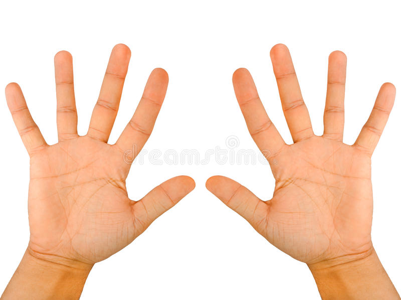 Fingers. Both human hands an palms royalty free stock photo