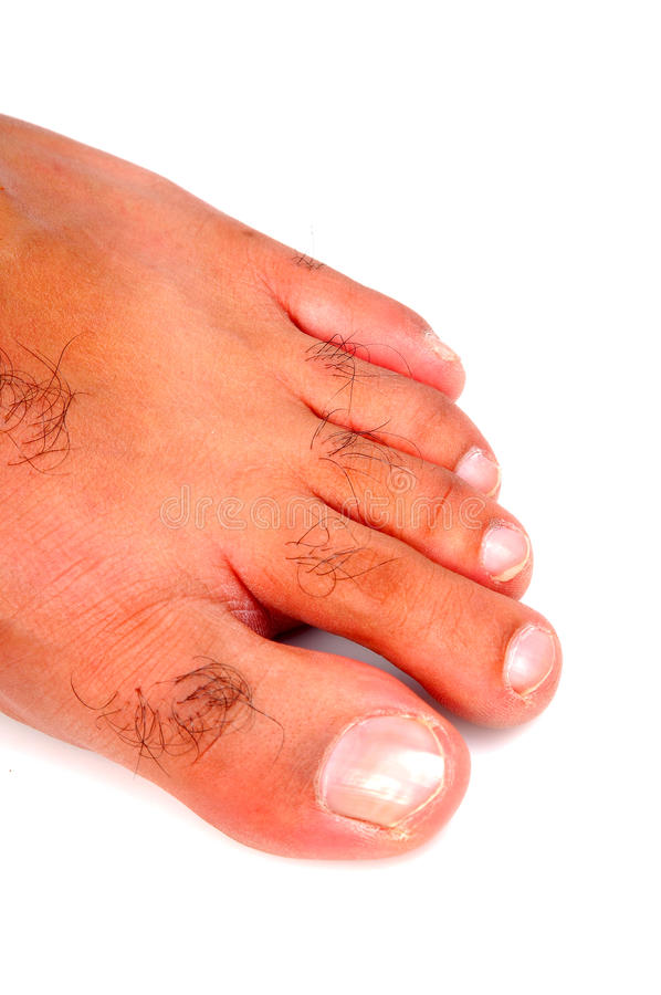 Download Fingers stock photo. Image of foot, bright, indoor, colorful - 9566058