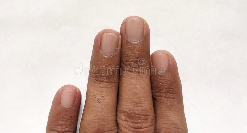Fingers of human body. Cutting nails. Index finger. Ring finger. Pinky finger. royalty free stock images