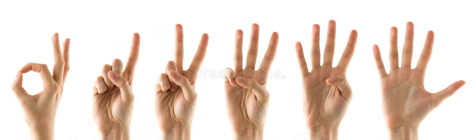 Fingers with numbers stock image