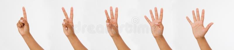 Fingrar för kvinnahandshow Fingret pekar tätt upp på vit bakgrund Kopieringsspase arkivfoto