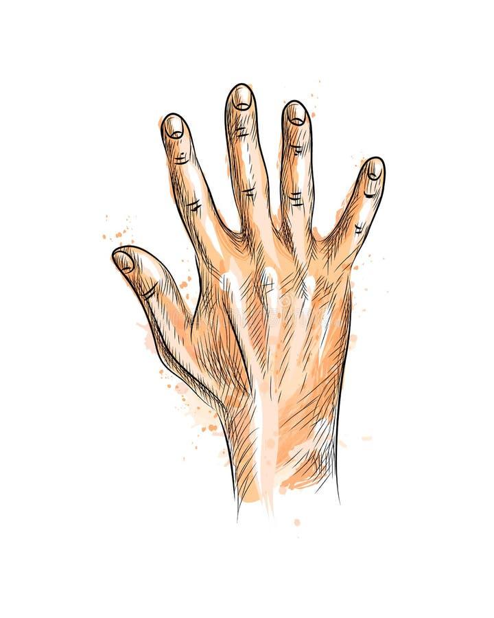 fingrar fem hand uppvisning stock illustrationer