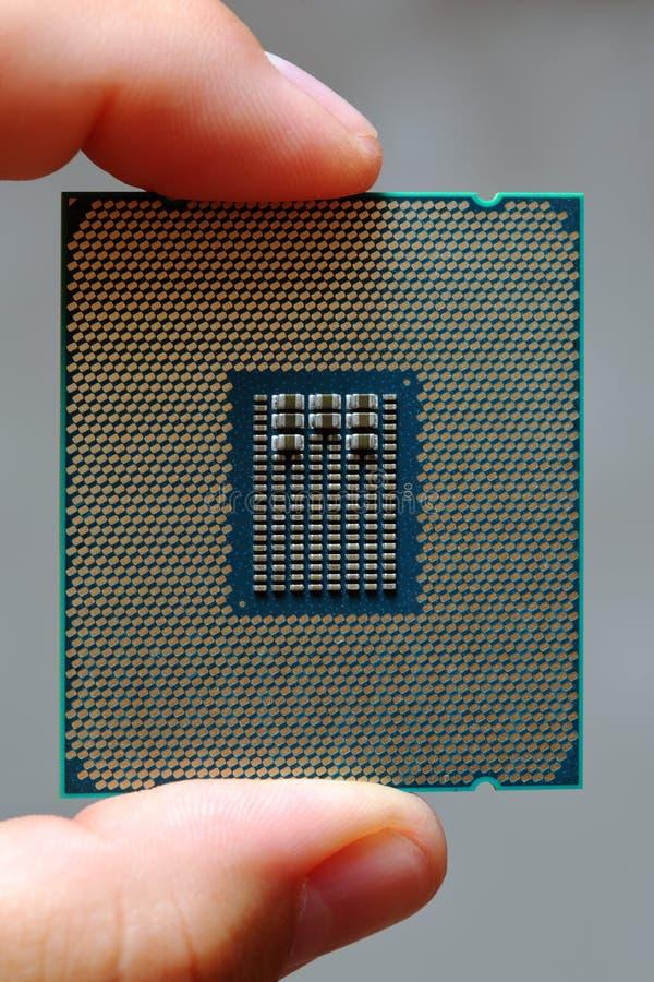 Fingrar rymmer den moderna enheten för den centrala processorn royaltyfri foto