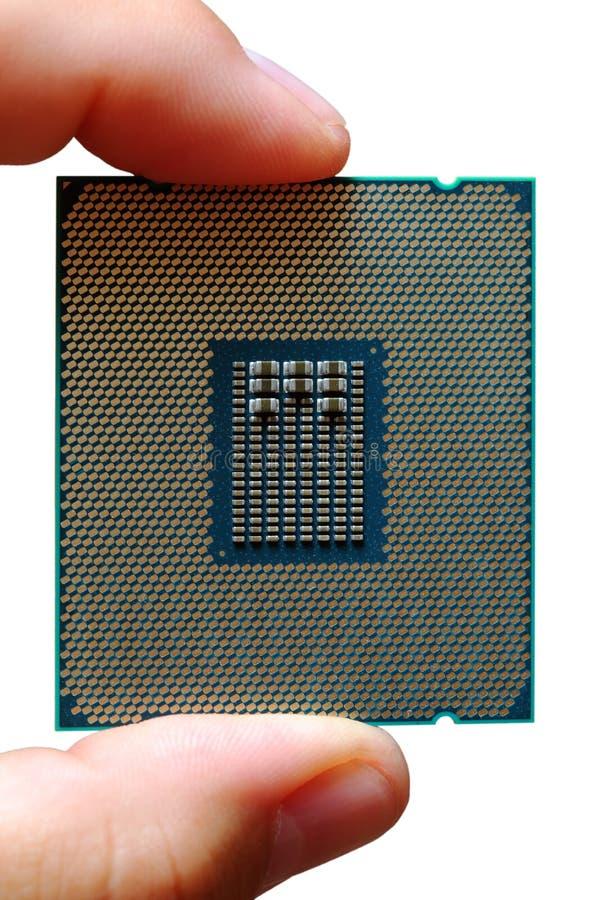 Fingrar rymmer den moderna enheten för den centrala processorn arkivbild