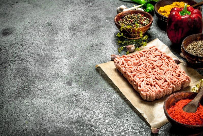 Finhackat nötkött med olika kryddor och örter royaltyfri foto