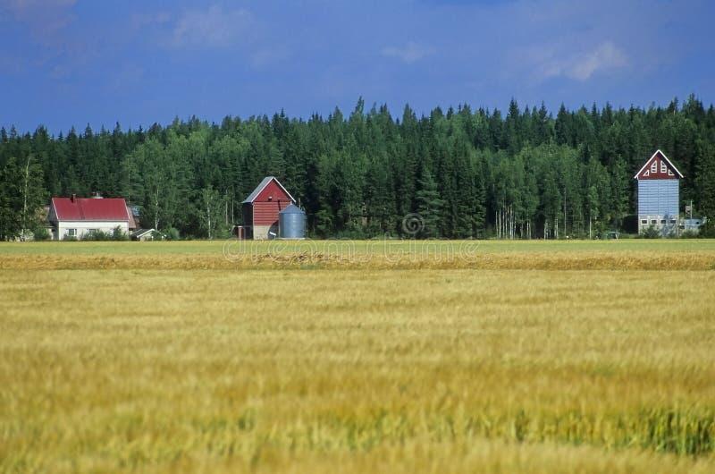 Finish farmhouses no.1 stock photography