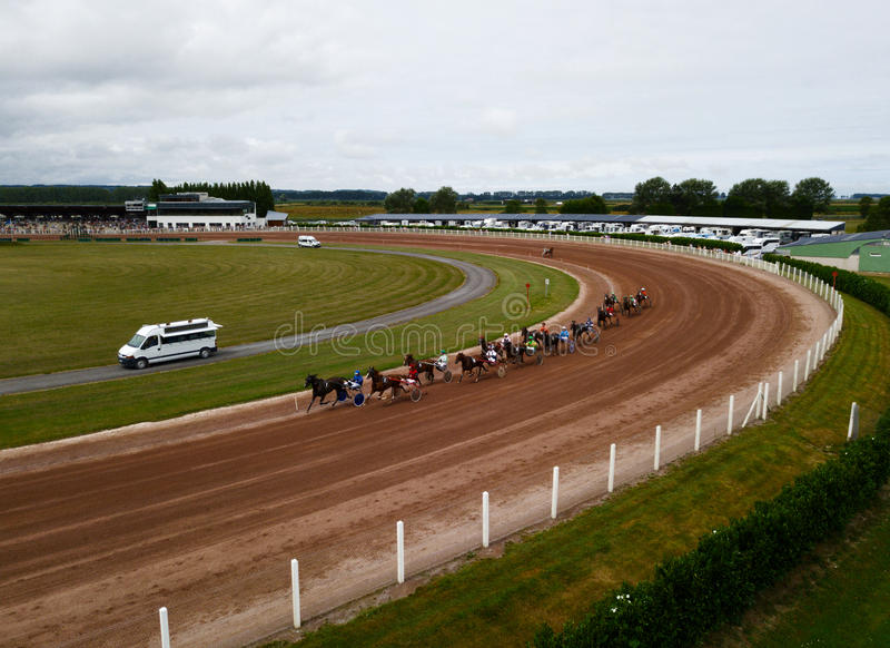 Finish of harness race on hippodrome royalty free stock photo