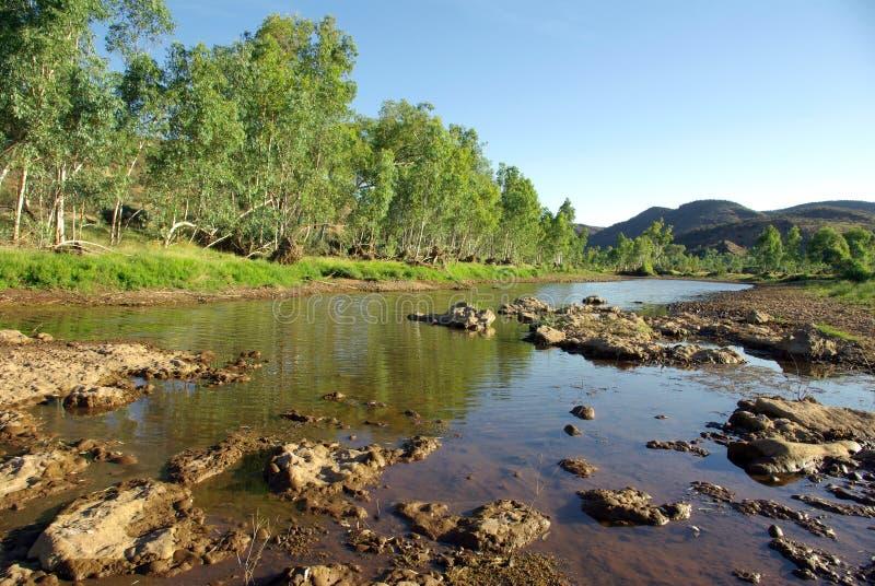 Finke Fluss, Australien lizenzfreies stockbild