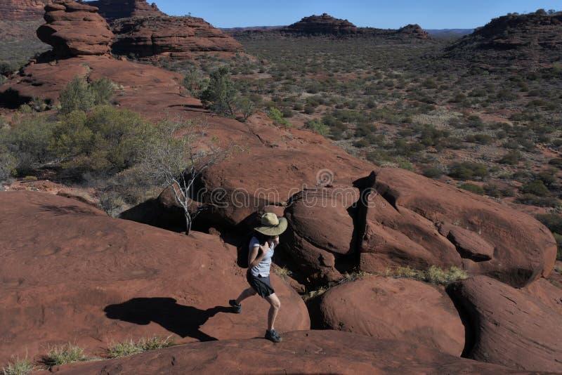 Finke wąwozu parka narodowego terytorium północne Australia obraz stock