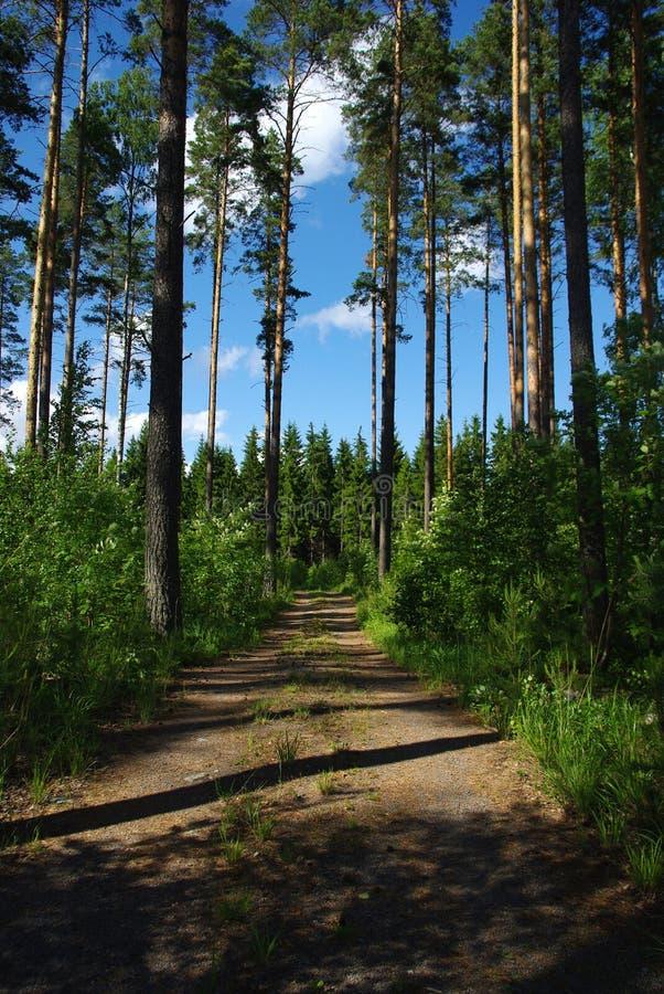 Finland stock afbeeldingen